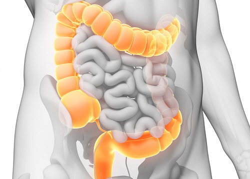 A Homemade Colon Cleansing Diet For